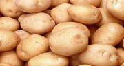 خواص سیب زمینی ، شیرین و خام و پخته و بفش و تنوری برای پوست صورت و مو
